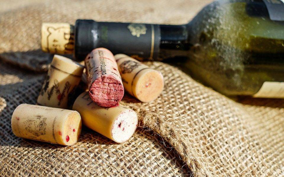 Κρασί από τους αυριανούς οινολόγους του Πανεπιστημίου Δυτικής Αττικής